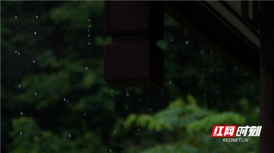 今晨怀化下了小雨。吴三东 摄