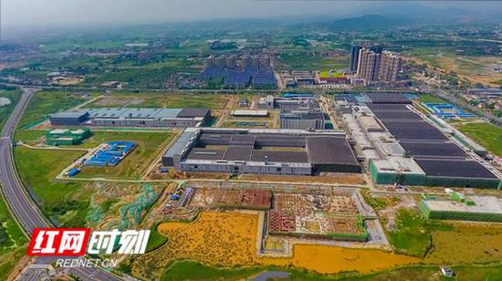 常德持续优化进营商环境,产业发展越来越稳健。