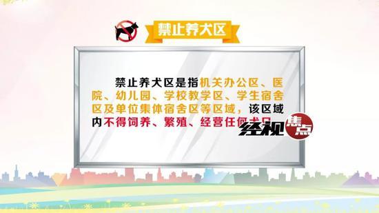 长沙市人大代表陈树