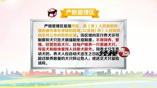 长沙市人大代表 作家 陈树