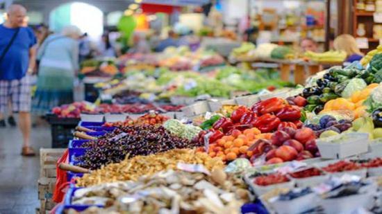 长沙蔬菜降价了!白萝卜成当期价格最低蔬菜
