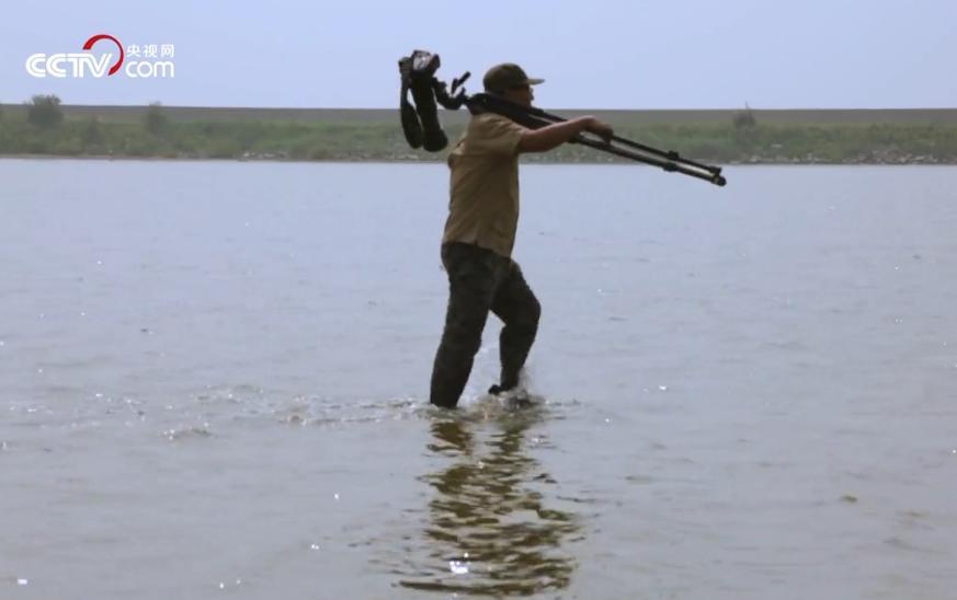 王建民在湿地拍鸟(视频截图)