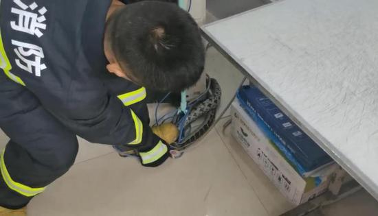 办公桌抽屉惊现约2.2米长的大蛇!打印店老板吓得赶紧报警
