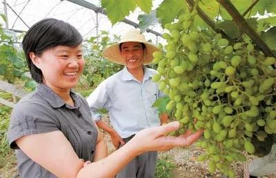 刘红云(左) 资料图