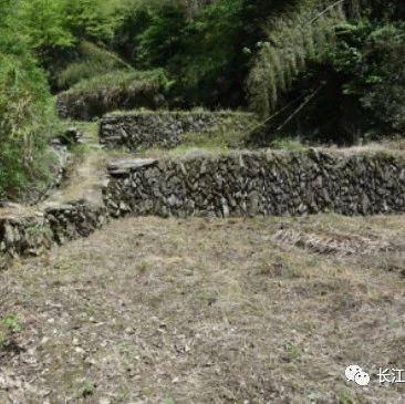 震撼!岳阳临湘壁山村发现大片堆石遗迹