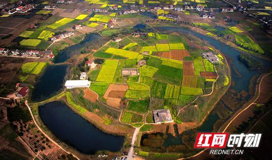 稻作之源,城池之母——城头山。