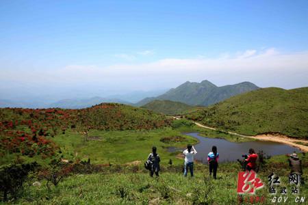 西瑶绿谷国家森林公园。 周卫民 摄