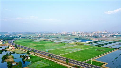 5月27日,桃源县陬市镇,成片的高标准农田映入眼帘,袁隆平第三代杂交水稻高产攻关基地也在其中。卜云 摄