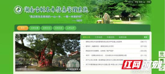 湖南古树名木信息管理系统网页版截图。