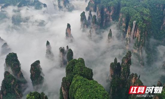 云雾缭绕的张家界武陵源景区,美如仙境。吴勇兵摄