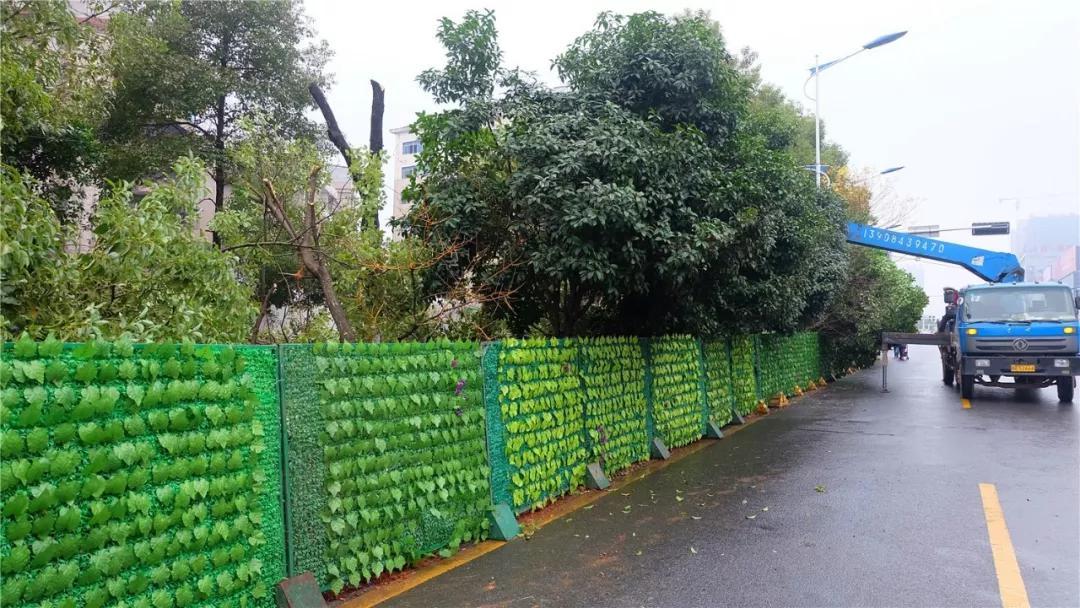 荷塘小学附近,被绿色围栏围住的施工现场