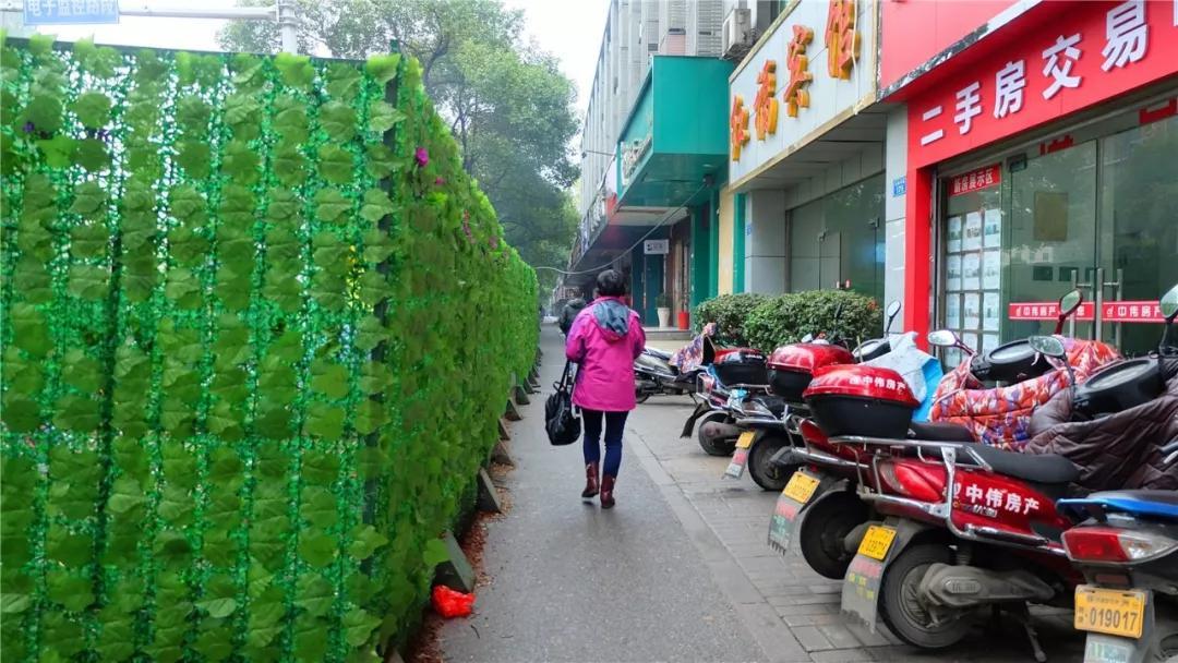 红小路附近,目前也已被绿色围栏,准备施工