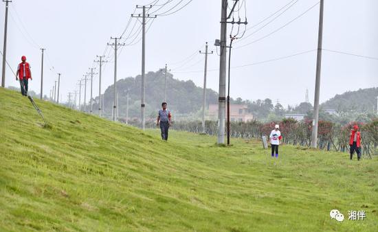 7月9日,长江大堤临湘市江南镇段,工作人员在巡查堤坝。湖南日报记者 童迪 通讯员 刘信制 摄