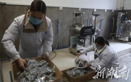 2月6日,东安县中医院药制人员在中药房将熬制好的中药塑封打包。严洁 摄