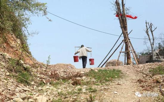 自己种菜、挑水、砍柴,李子英告别喧闹的大都市,过着原汁原味的田园生活。