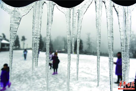 1月4日,受低温雨雪天气影响,张家界武陵源风景区变成冰雪王国,漫山遍野皆是晶莹剔透的雾凇、冰花。记者 郭立亮 通讯员 吴勇兵 摄