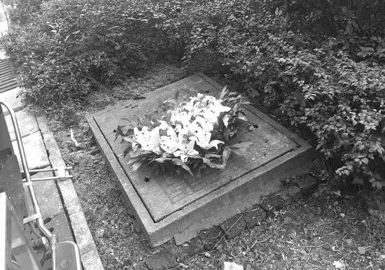 1月10日晚,湖南农业大学东湖学生公寓5栋,一男生向女生表白(左图)。第二天,表白的百合花被发现扔在放置杂物的地方。组图/受访者提供
