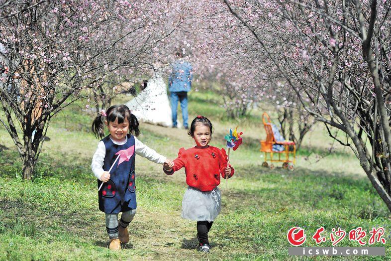 昨日上午,长沙园林生态园内,孩子们在赏花撒欢。  长沙晚报记者 王志伟 摄