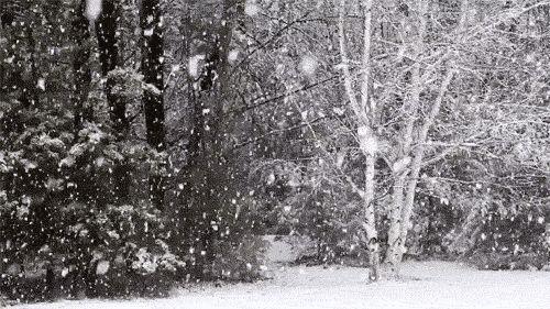 湖南由纯雪转为冻雨模式 未来一周气温前低后高