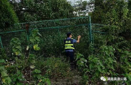 随后,路政员将三兄妹安全护送到家,并关闭被打开的隔离栅,继续上路巡逻。