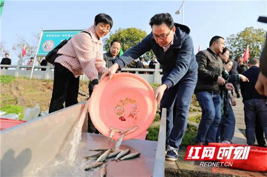 衡阳县委副书记、县长孙鹏伟(前右)在投放鱼苗。