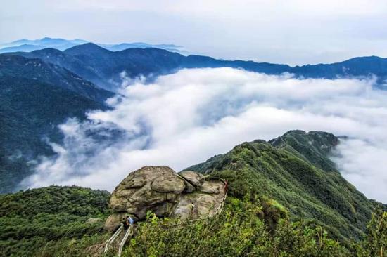 (南岳云海 摄影:陈涛)