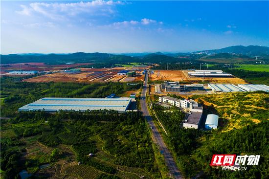 桂阳县工业园湖南广东家居智造产业园随处可见热火朝天的施工场面。
