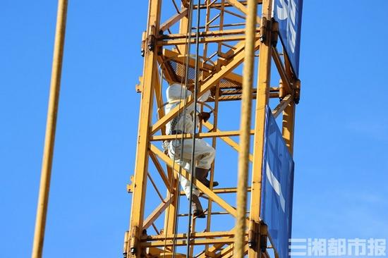 (消防员在工地塔吊上处理马蜂窝现场。 通讯员供图)