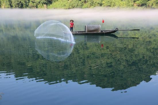 薄雾笼罩的江面上,正上演渔夫撤网,渔网在空中划出一道优美孤线,吸引众多游客拍摄。