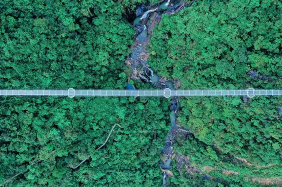 滴水源景区红网玻璃鹊桥。