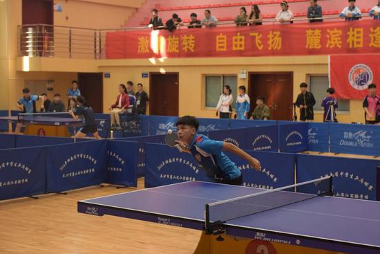 乒乓球精彩赛事