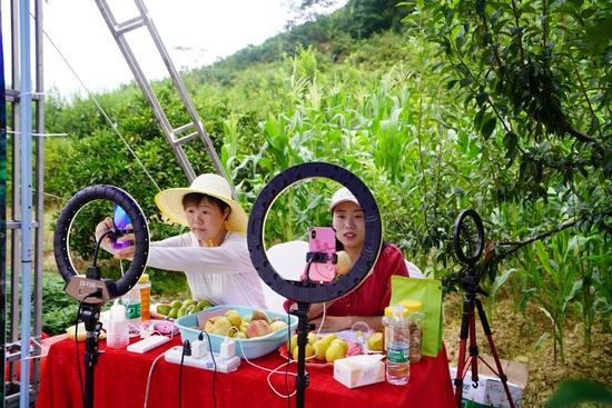 直播团队正在推介当地特色水果