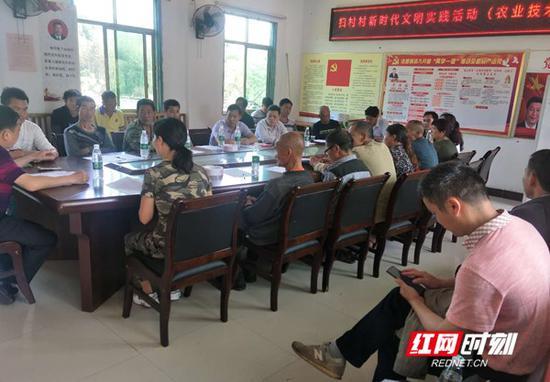 浩塘镇扫村党员干部商议村容村貌整治。
