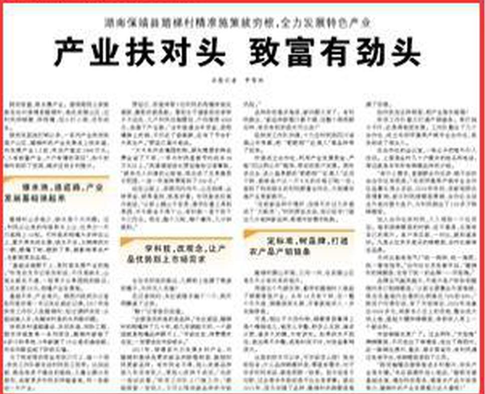 湖南保靖县踏梯村精准施策拔穷根:产业扶对头 致富有劲头