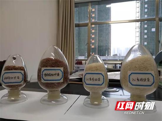 郴州市农科所水稻遗传育种科研工