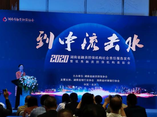 湖南省融资担保机构社会责任报告发布会在长沙顺利召开