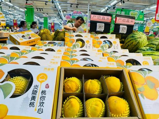炎陵黄桃上市成商超水果明星