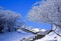 湖南现积雪 部分景点暂停开放