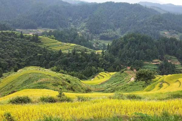 一座美如画卷的梯田村落:邵阳城步卡田村