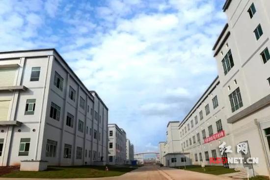 蓝思科技位于湖南浏阳经开区新项目基地实景图。陈俊杰摄