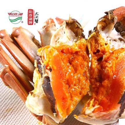 """什么样的蟹才算是""""好吃""""的大闸蟹?"""