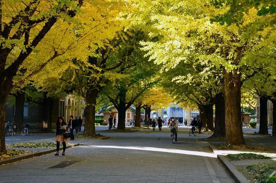 早稻田大学校园