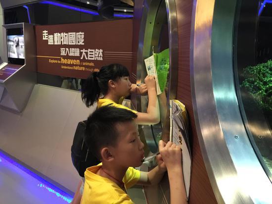 香港小学生游湖南,研学手册里藏着香港的秘密小学生跑步摔倒图片