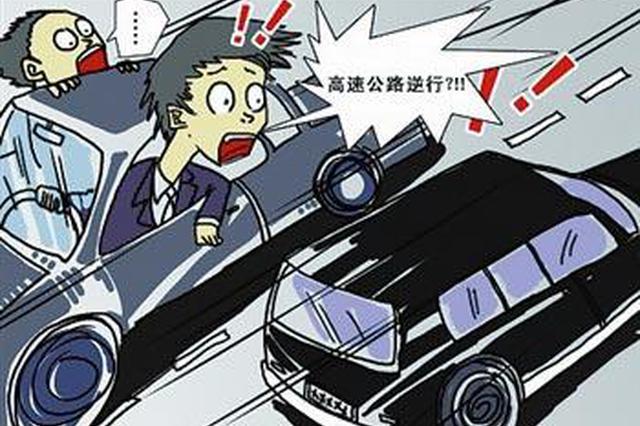 岳阳一小车导航提示出错 深夜高速上逆行酿事故