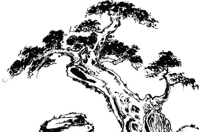 """湖南3株古树入选中国""""最美""""树龄有1500岁"""