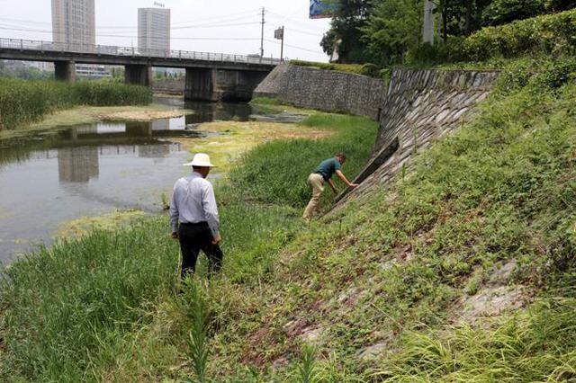 湖南督导长江入河排污口整改工作 确保7月前完成