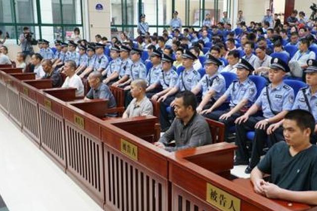 非法捕杀、出售、收购52只小天鹅 14名被告人受审