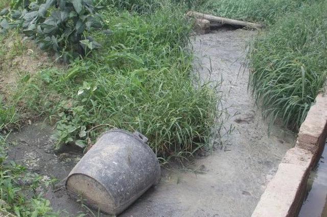 宁乡这里有10个养猪场粪污直排 严重影响村民生活