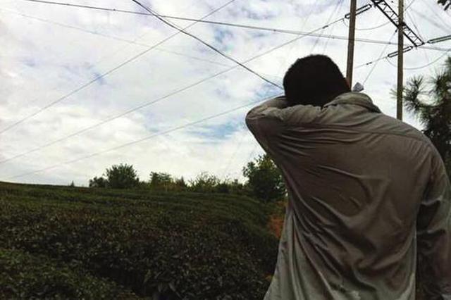 极端高温将袭岳阳 5县市已出现不同程度干旱