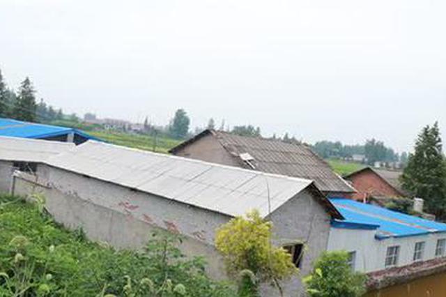 常德一养猪场紧挨住房而建 环保部门表示将依法关停